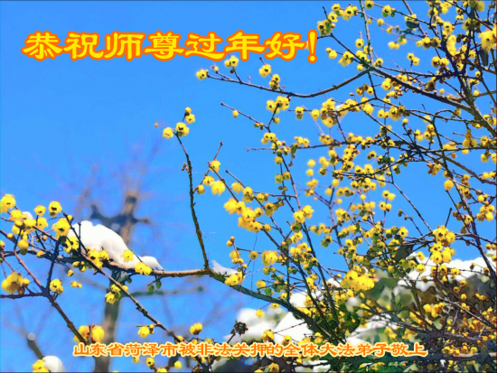 2020 1 24 new year greeting card collection3 14 aBPW4KN